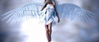 k-chemu-snitsya-angel