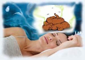 к чему снится много говна во сне