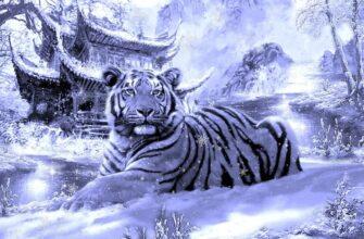 По восточному календарю год Черного Водяного Тигра